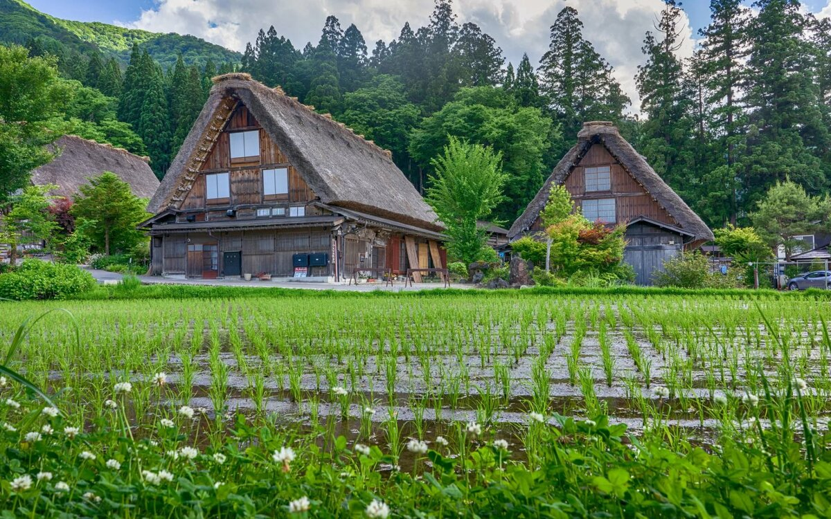 картинки домика в деревне на заднем плане можно