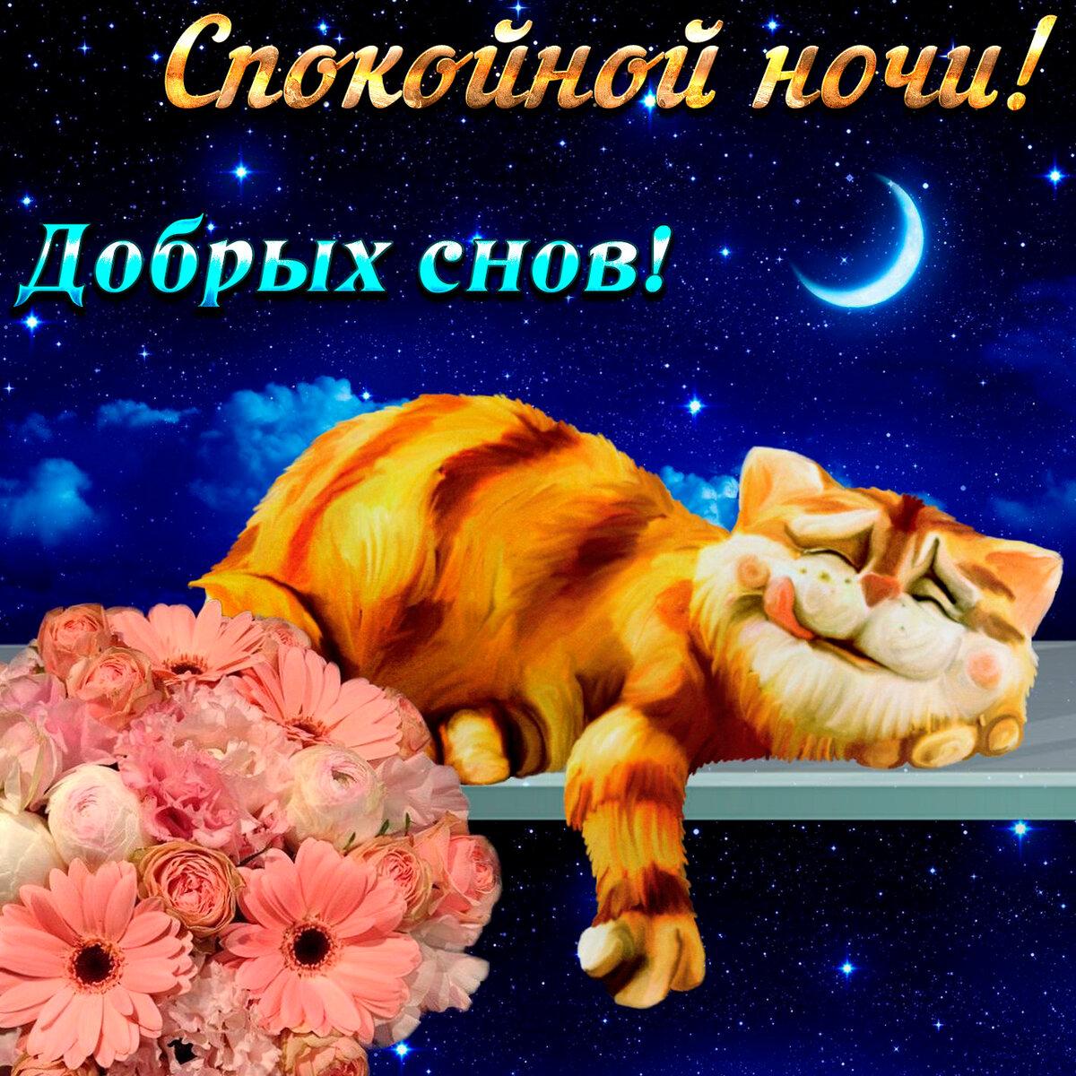 Доброй ночи счастливых снов открытки чую путной