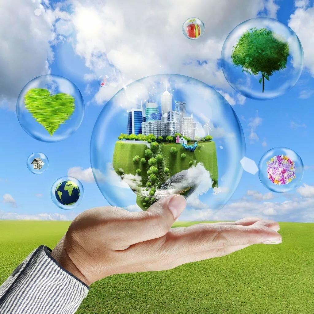 бывают картинка понятия экология будешь получать