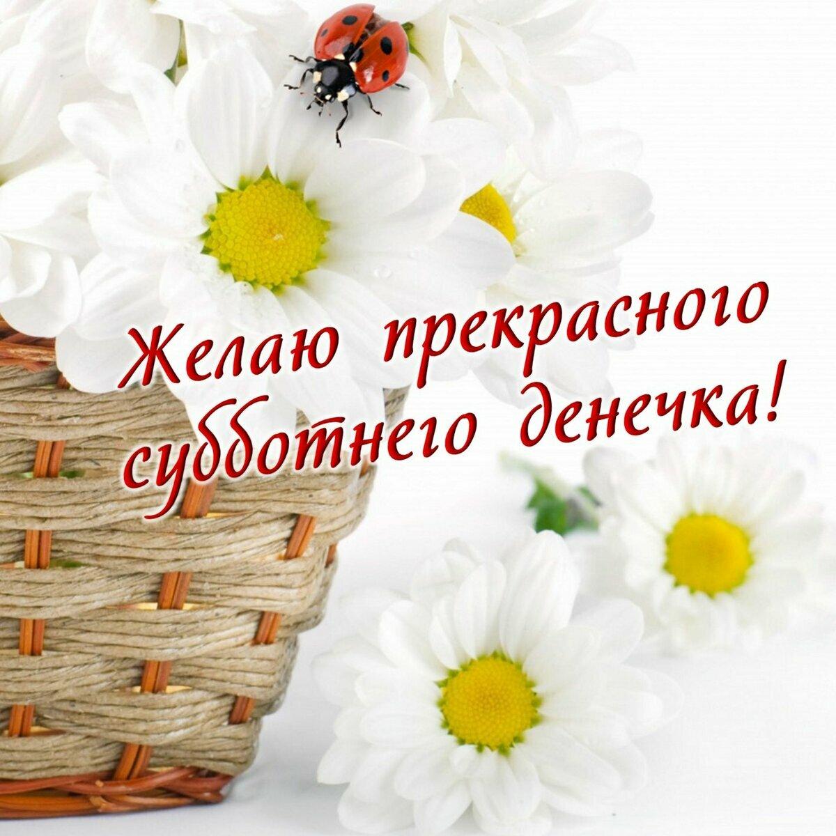 Поздравление с днем победы друзьям и родным