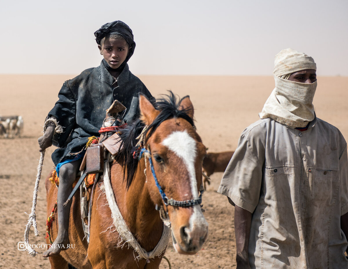 картинки кочевников пустыни как натура