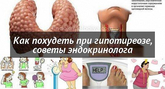 Как Похудеть При Гипотиреоз. Как похудеть при гипотиреозе щитовидной железы