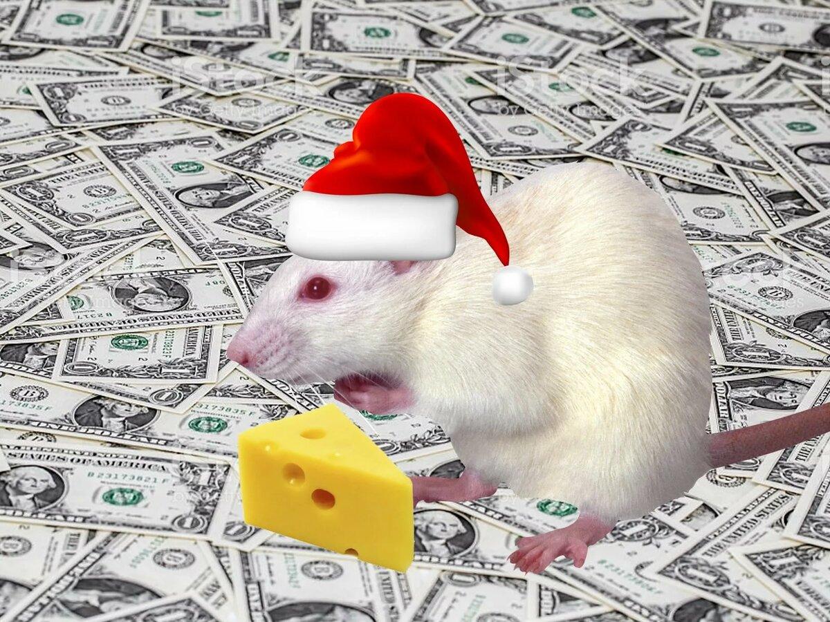 Денежная Крыса: Как войти в Новый год с деньгами?