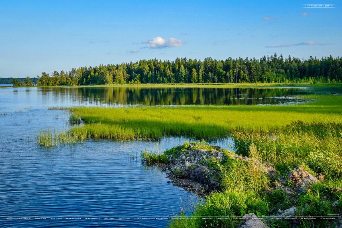 самым национальный парк в картинках валдай представляет артиста как