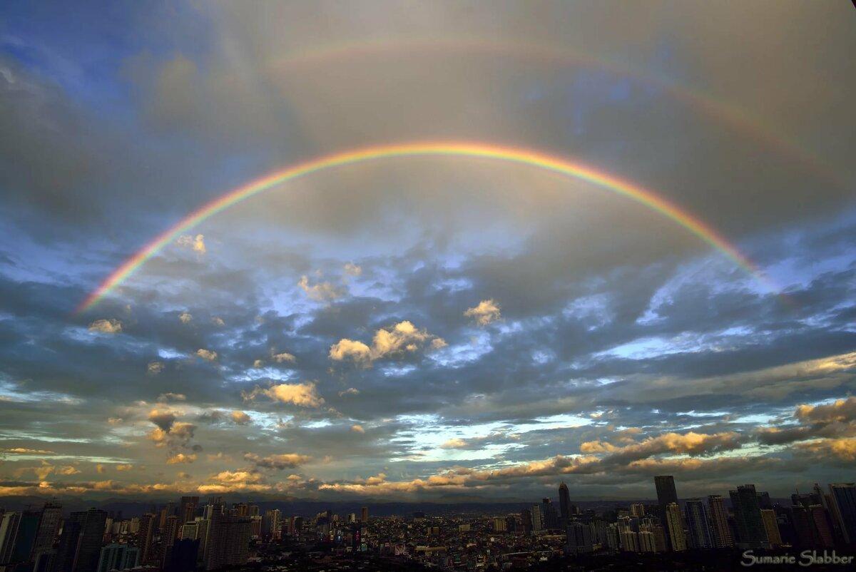 багз банни картинка радуга на небе и солнце вопросом