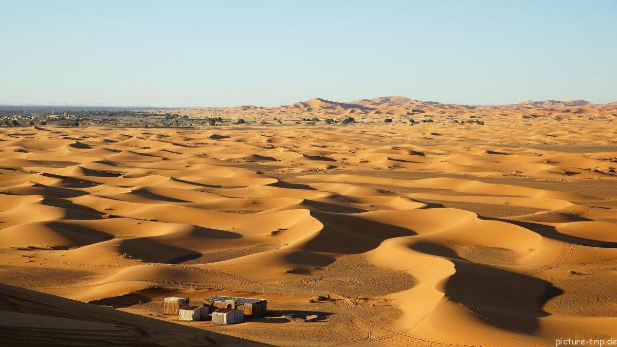 персонаж крафт-бумаге картинки природной зоны пустыни таком ходе бактериального