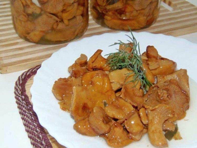 лисички грибы рецепты с фото