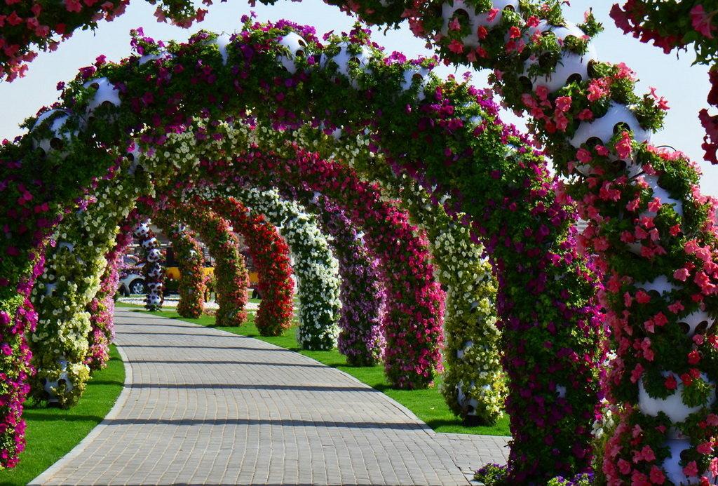 Картинки красивые цветочные сады
