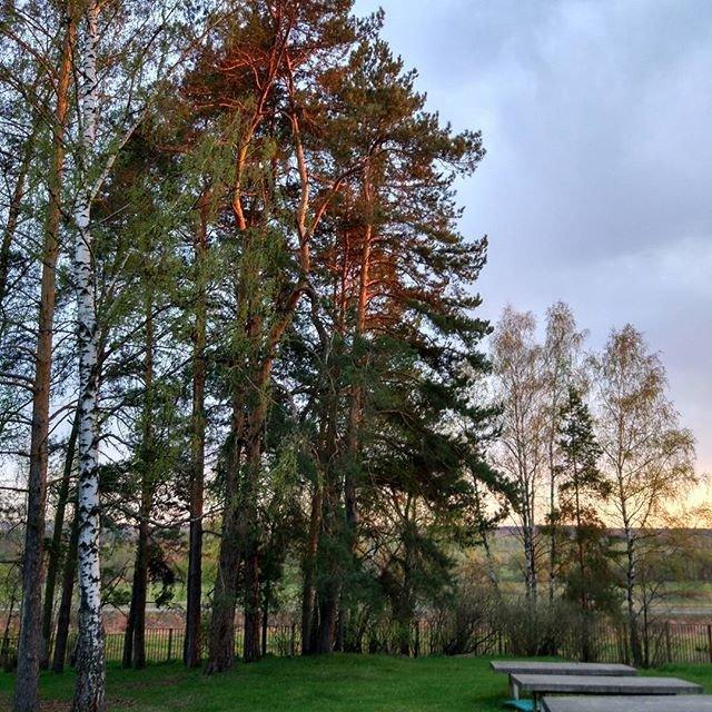 Закат в подмосковье. Без ретуши и обработки. Sunset. W/O postprocessing #sunset