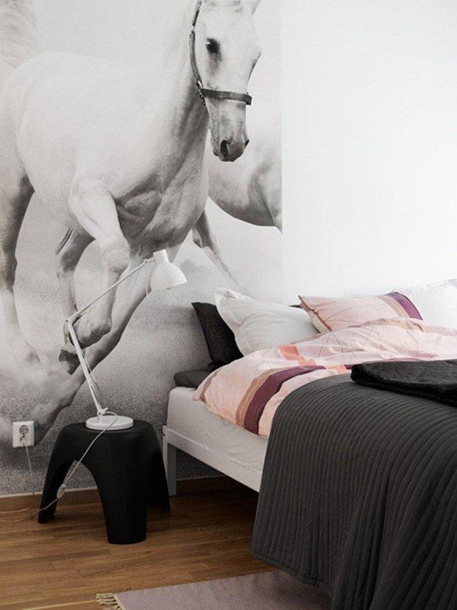 замечают, что постер с лошадью может получится