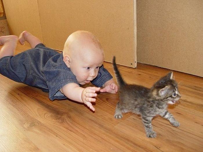 Прикольные картинки про животных с детьми