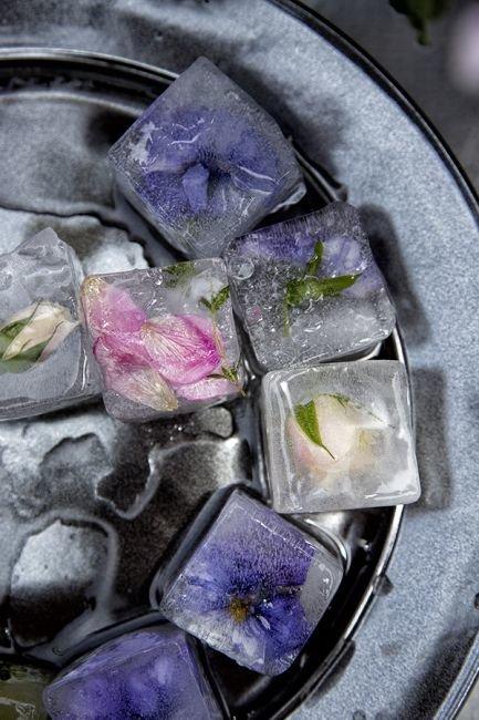 Необычная инсталляция - цветы во льду