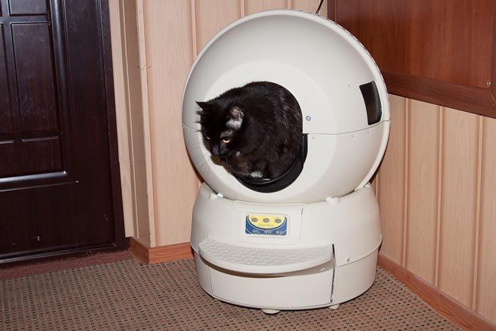 Робот - кошачий туалет