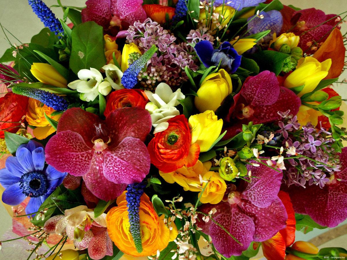 Самый яркий букет в мире картинки, доставка цветов спб