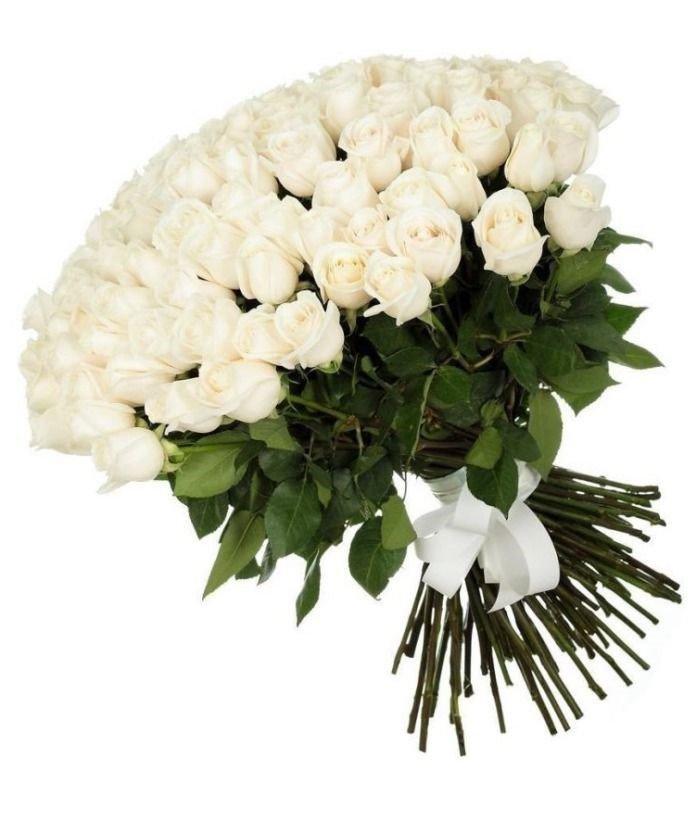приисках картинка букет белых цветов сорта чайная