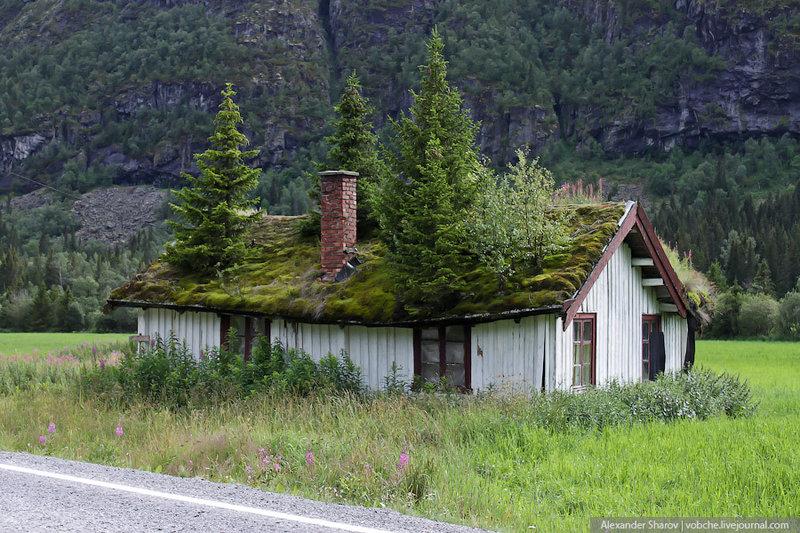 Крыши в Норвегии
