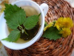 Чашка зеленого чая, мята