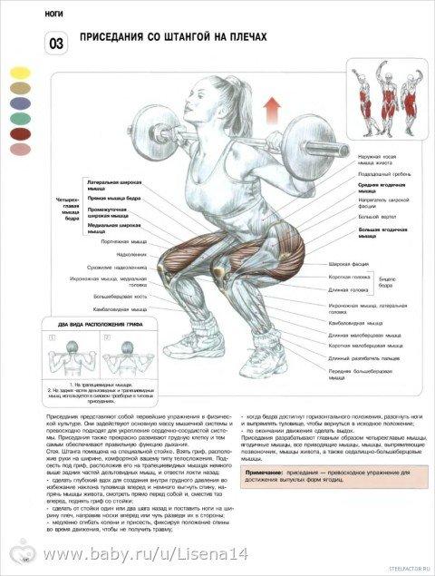 Упражнения для ягодиц и ног в тренажерном зале