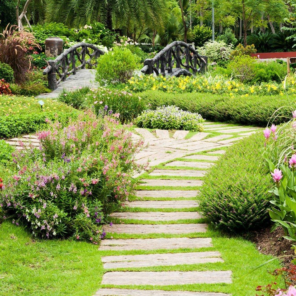 дорожки в саду фото дизайн