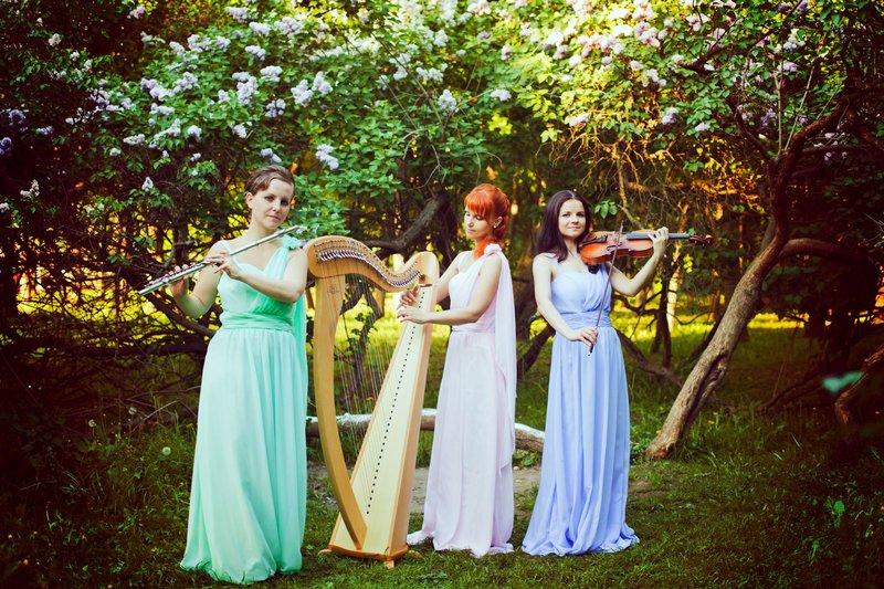 Живая музыка на свадьбу - Трио ReForte