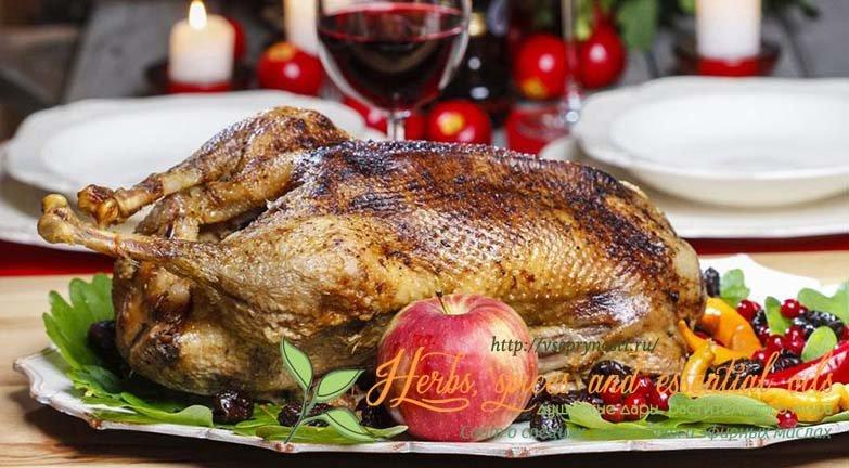 Интересная статья про специи для гуся, как приготовить вкусного гуся с помощью пряностей, рецепты и советы от шеф-поваров, фото и видео