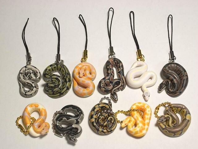 змеи разных пород