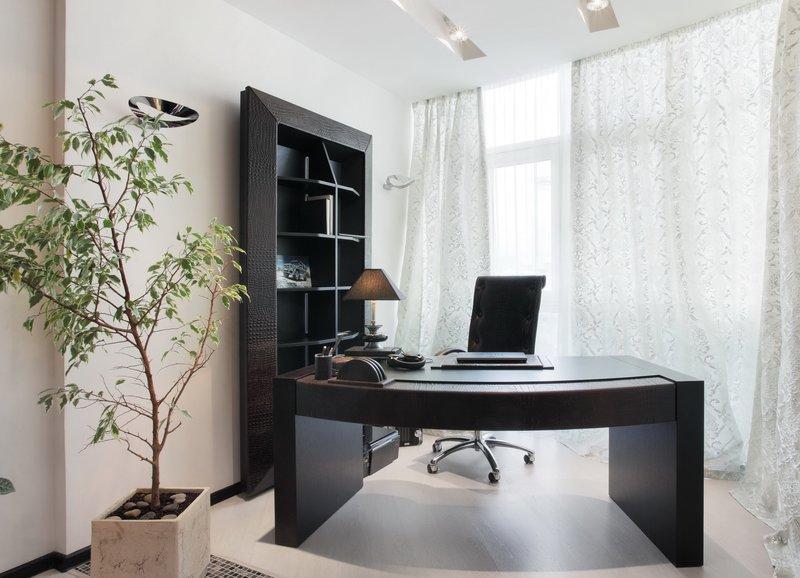 белые стены, огромное окно и настольная лампа дополняют освещение домашнего кабинета