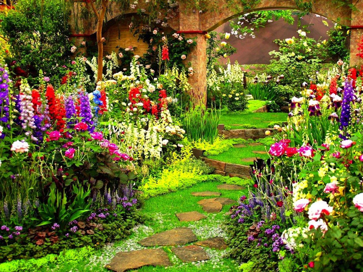 Картинки для рабочего стола цветы в саду
