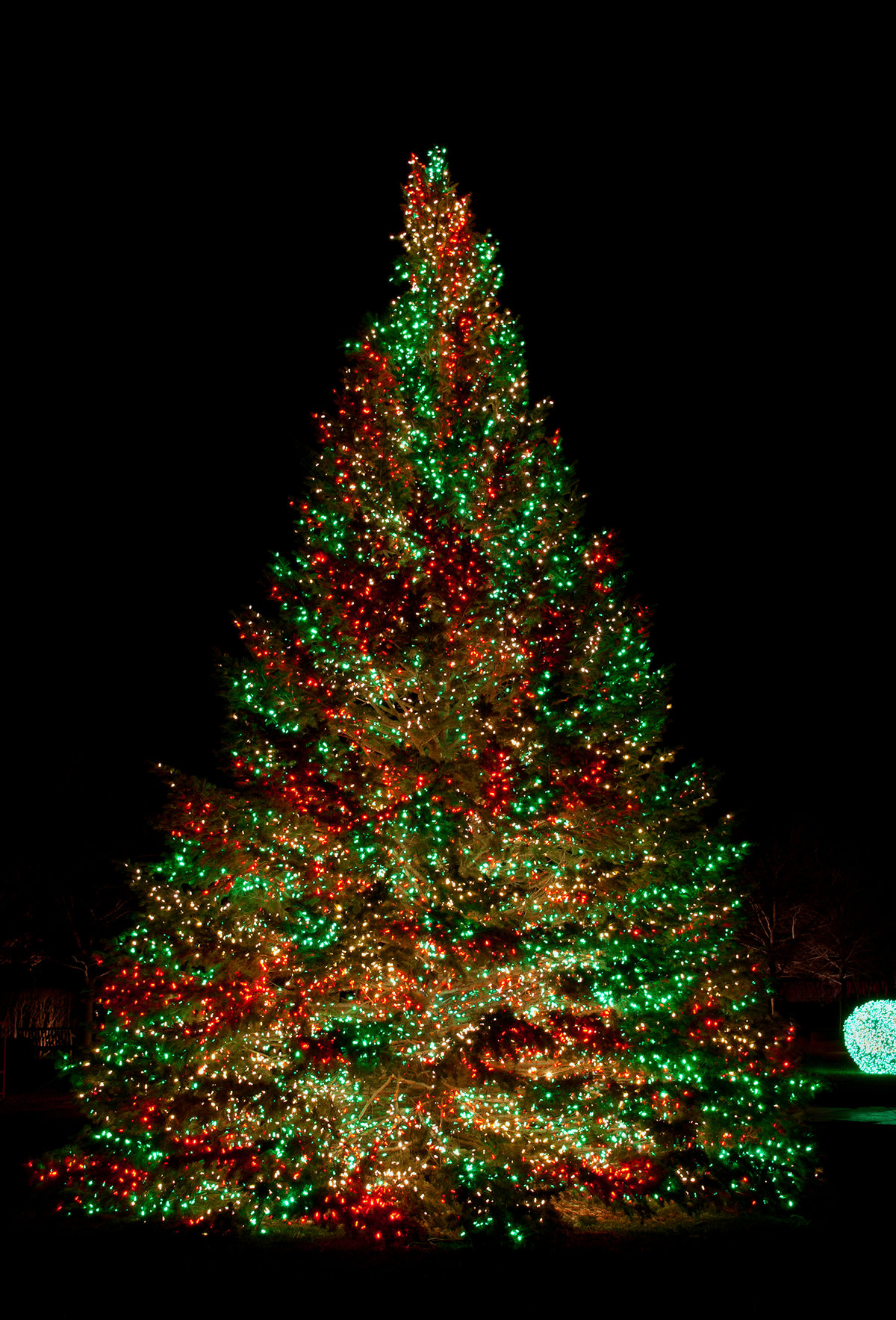 Гифки с новогодней елкой