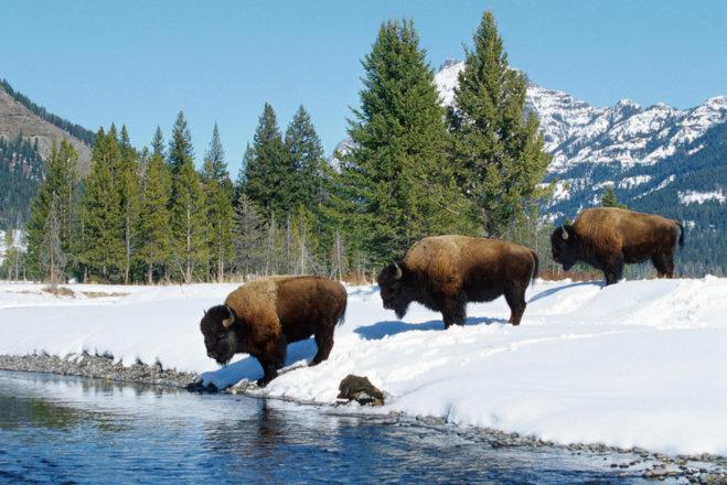 Самые красивые пейзажи Северной Америки