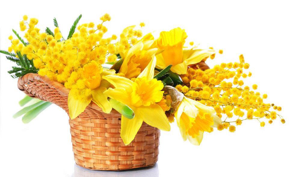 Мимозы букеты с 8 марта картинки, картинка поздравительная