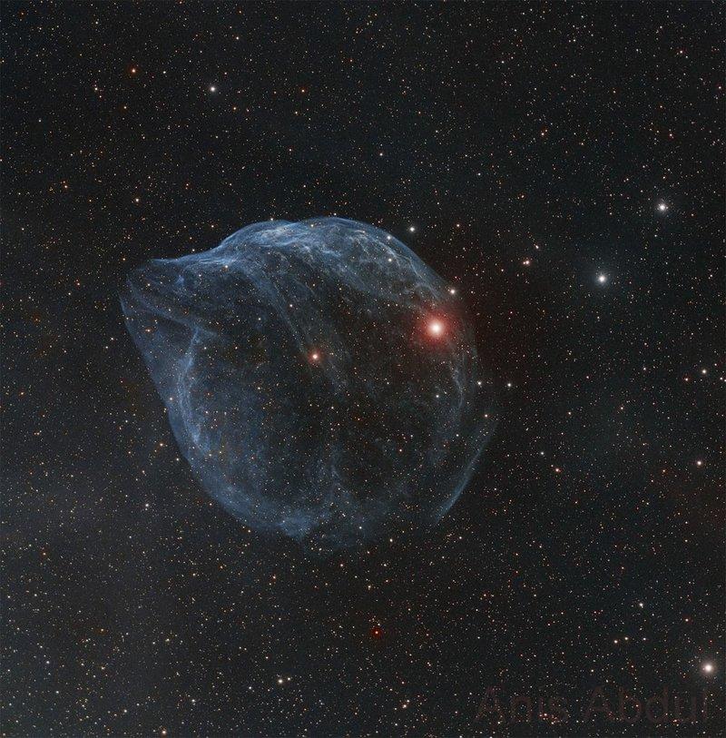 Шарплесс 308: звездный пузырь  Выдутый быстрым ветром горячей, массивной звезды, этот космический пузырь огромен. Он занесен в каталог как Шарплесс 2-308 и находится на расстоянии около 5200 световых лет в созвездии Большого Пса. Его видимый угловой размер на небе больше диска полной Луны, что соответствует диаметру в 60 световых лет.  Массивная звезда, создавшая пузырь, принадлежит к звездам Вольфа-Райе – это яркая звезда около центра туманности. Масса звезд Вольфа-Райе более чем в 20 раз превышает массу Солнца, предполагается, что это короткая стадия эволюции массивных звезд, которая завершается взрывом сверхновой. Быстрый ветер звезды Вольфа-Райе создал туманность, имеющую форму пузыря, выметая медленно двигающееся вещество, сброшенное звездой на более ранних стадиях эволюции. Возраст этой выдутой ветром туманности – около 70 тысяч лет. Относительно слабое излучение, запечатленное на этом широкоугольном изображении, в основном обусловлено свечением ионизованных атомов кислорода, изображенным синим цветом.