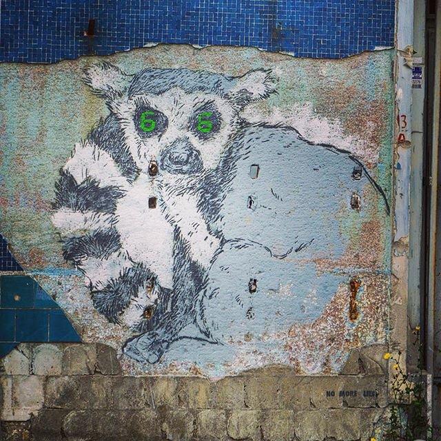 #Istanbul #graffiti #streetart #art #animal @Istanbul Граффити с непонятной животиной в Стамбуле :) Кот или енот? :)