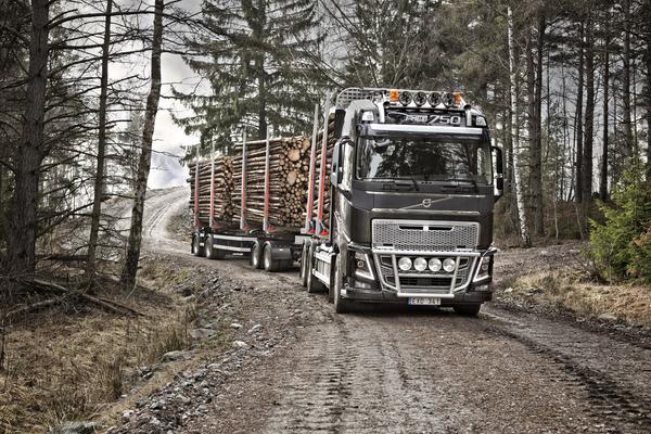 Volvo FH16 750 6×4 Rigid Globetrotter Cab Timber Truck