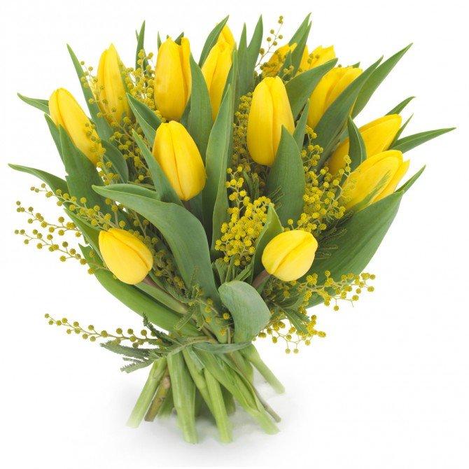Тюльпаны и мимоза картинки, картинки