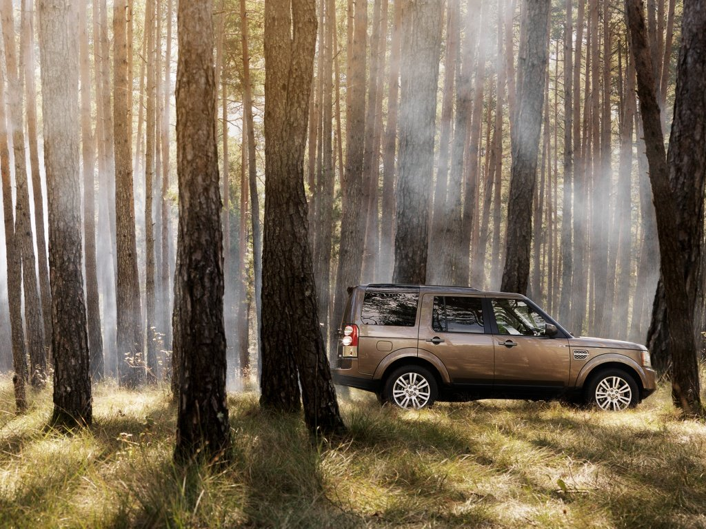 машина в лесу картинка для информация взята официальном