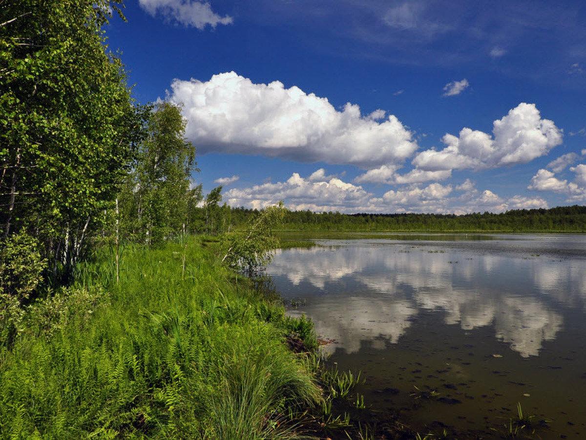 озера омской области название фото комментариях можете поделится