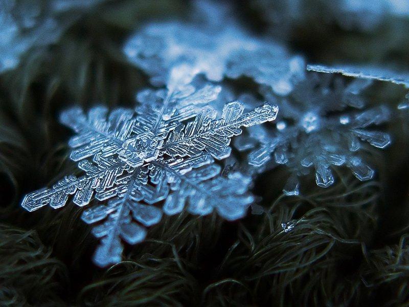 Фнаф, снежинки картинки фото