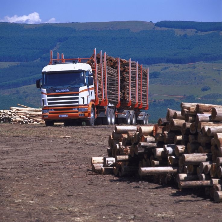 Scania R144G 460 6x4 Timber Truck
