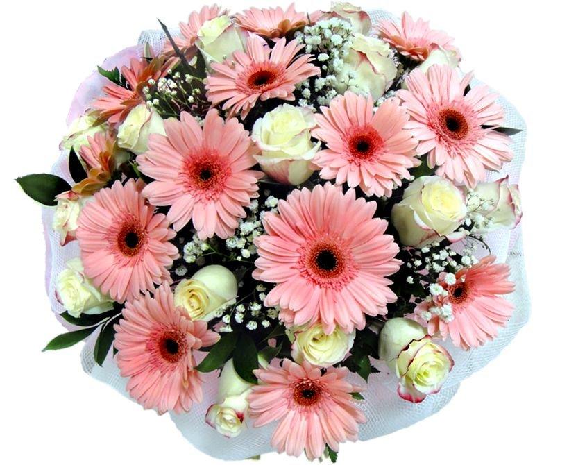 Заказ цветов, букет герберы и розы