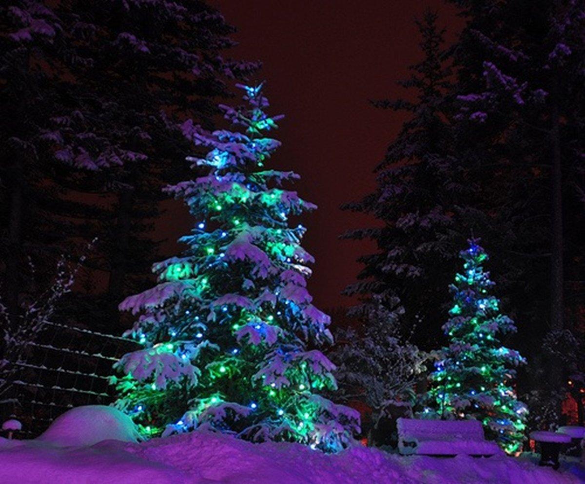 ваши елка ночью картинки идеальная