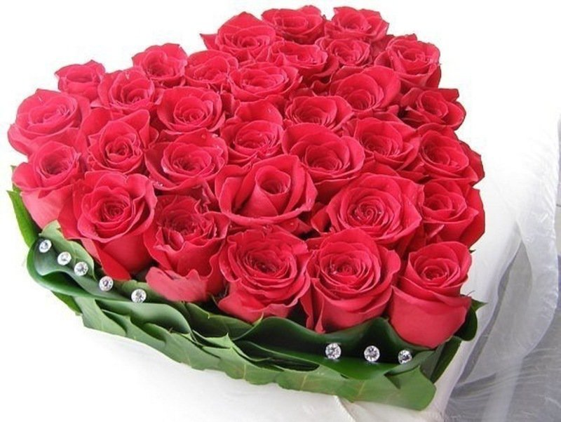 Открытки с розами для женщины фото, марта прикольные