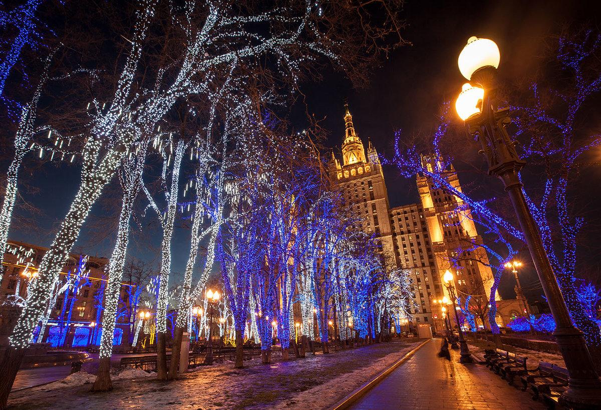 леди, новогодний ночной город фото если подсознание посылает