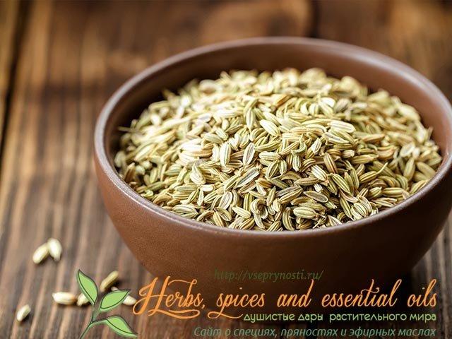 Семена укропа в кулинарии -как использовать семена укропа в кулинарии правильно и эффективно, советы и секреты от шеф-поваров.