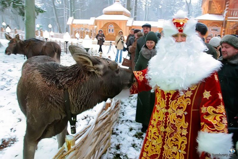 Развлекательные туры и отдых в Беларуссии на Новый год  и Рождество 2017. Новый год на улицах Минска