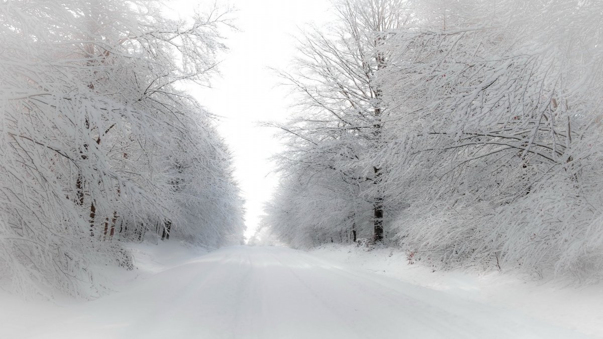 Открытки днем, картинки белый снег