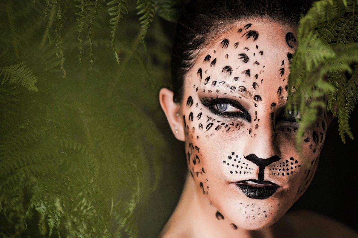 картинки макияж животный мир тому если свернуть