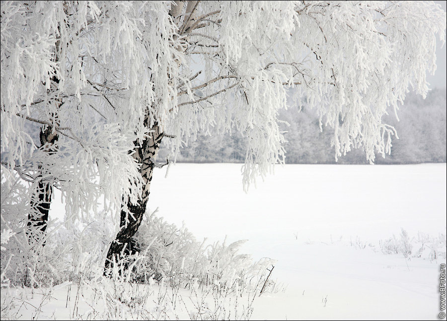 Фото г канск красноярского края зимой движущуюся картинку