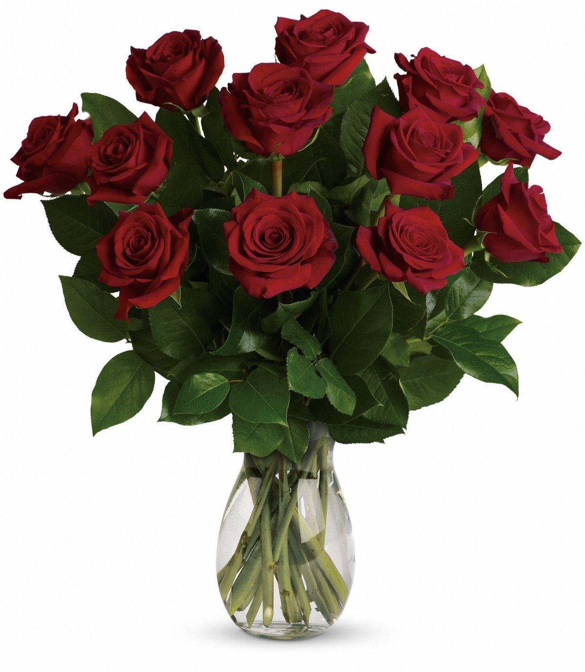 Букет из длинных роз, выписку роддома