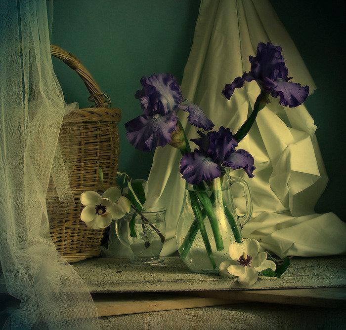 первом художественное фото цветка хочет сделать